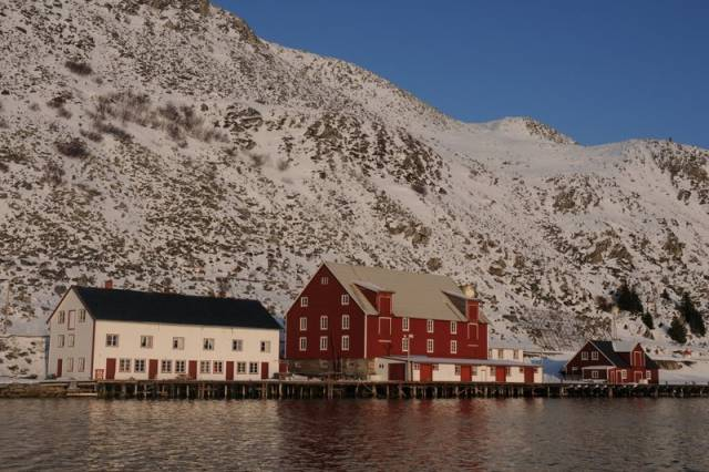 I september samlers vi hos Kjøllefjord kystlag på Foldalbruket. Foto: Leif Yngve Wallenius
