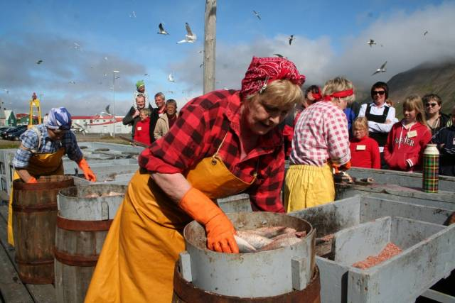 """""""Sildeteateret"""" i aksjon. I sommer kan vi se dem under Nordisk kystkulturfestival på Island. Foto: Sigurdbjørg Arnadottir"""