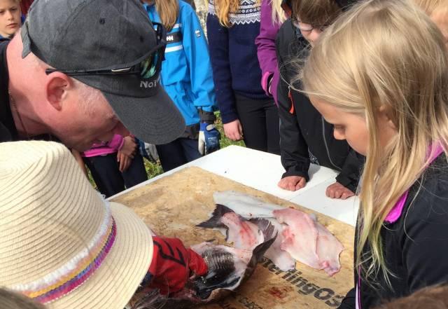 """Å behandle og tilberede fisken fra havet er noe av det ungene må lære for å tilegne seg et """"Marmelpass"""". Nå blir opplegget tilgjengelig for hele landet. Foto: Øksnes Kystlag"""